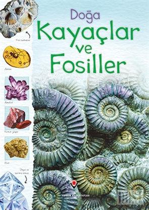Doğa: Kayaçlar ve Fosiller