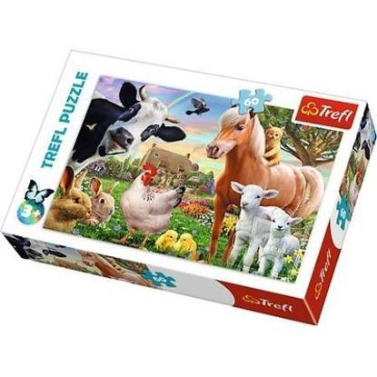 Çiftlik   60P resmi