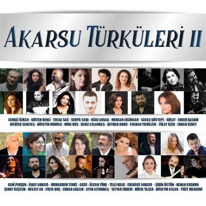 Akarsu Türküleri II resmi