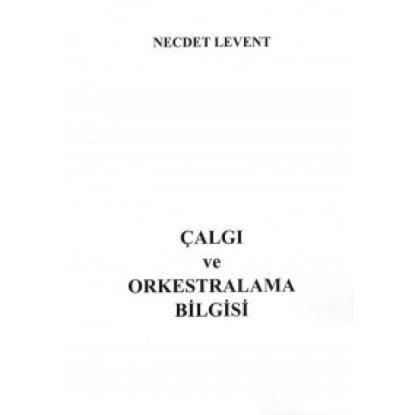 Çalgı Ve Orkestralama Bilgisi resmi