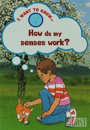 How Do My Senses Work