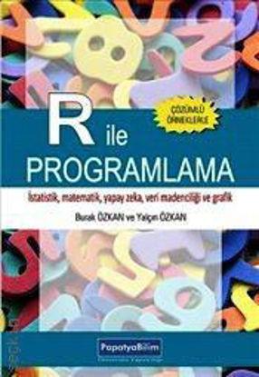 R İle Programlama resmi