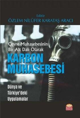 Çevre Muhasebesinin Bir Alt Dalı Olarak Karbon Muhasebesi resmi