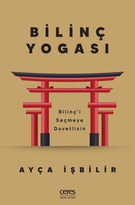 Bilinç Yogası resmi