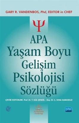 APA Yaşam Boyu Gelişim Psikolojisi Sözlüğü resmi