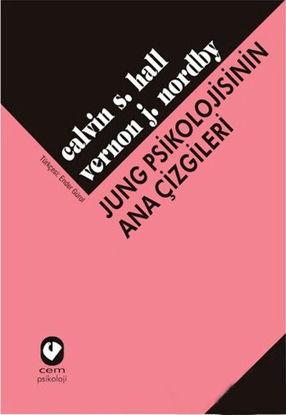 Jung Psikolojisinin Ana Çizgi. resmi