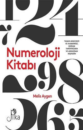 Numeroloji Kitabı resmi