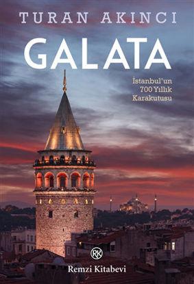 Galata resmi