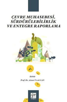 Çevre Muhasebesi, Sürdürülebilirlik ve Entegre Raporlama resmi